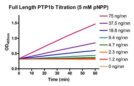 PTP1B.Inhibitor.Screening.Service figure1
