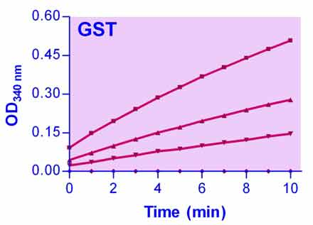 Glutathione S-transferase Assay Kit