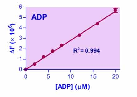 ADP Assay Kit (E2ADP-100)