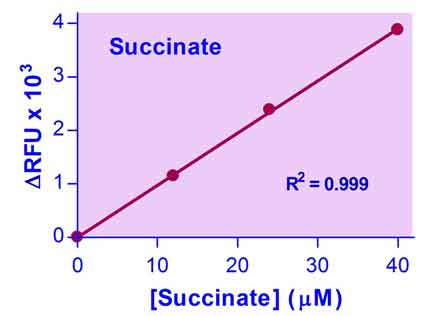 Succinate Assay Kit