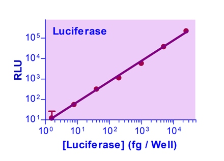 Luciferase Reporter Assay Kit (200 tests)